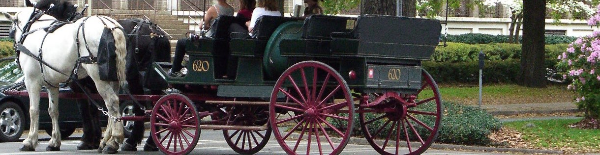 A pair of horses pulling a carriage for a commercial tour company in Savannah, GA.