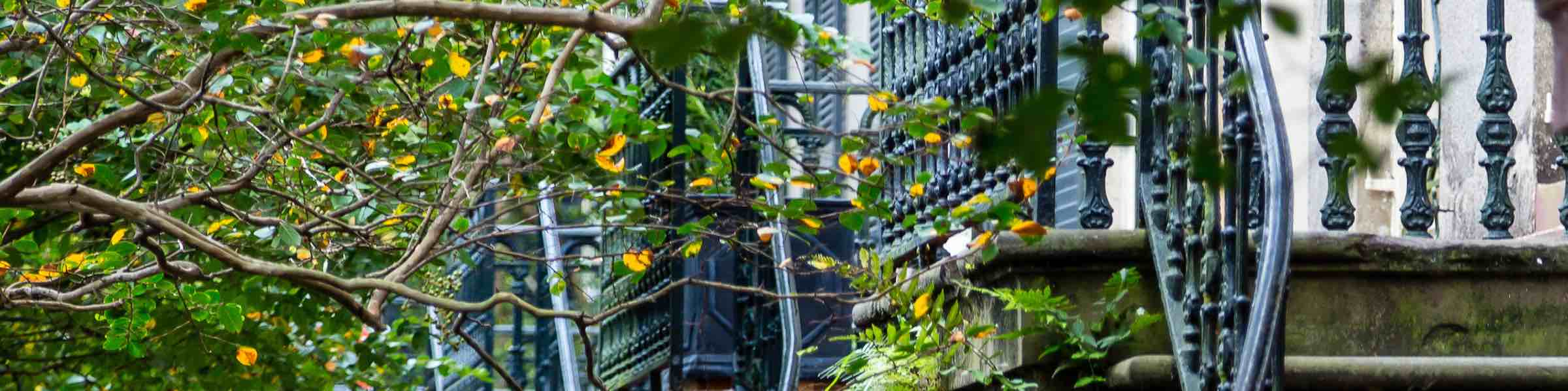 A few orange leaves in front of ironwork staircase railings on historic Gordon Row, near Chatham Square, Savannah, GA.