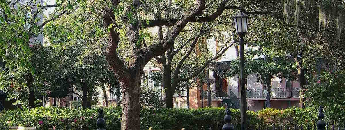 A view in one of Savannah, GA's Historic District squares