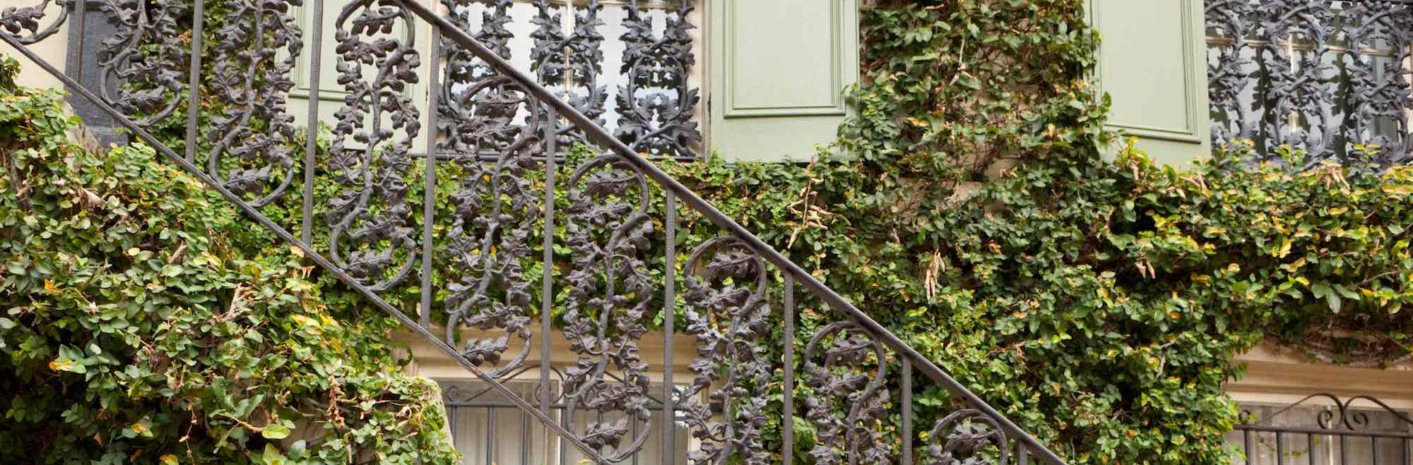 Thick ivy and ornamental ironwork on the facade of a Savannah, GA house.