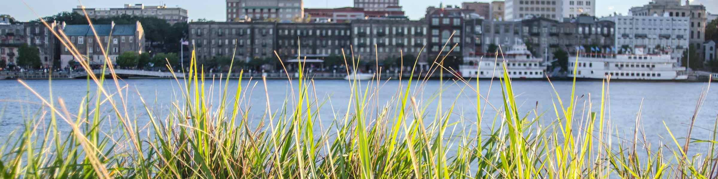 A view of River Street in Savannah through reedy grasses.