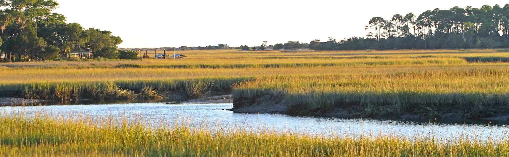 Creek winding through a lowcountry salt marsh.