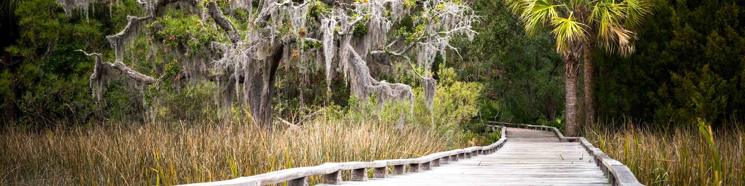 A boardwalk through the marsh landscape near Savannah, GA.