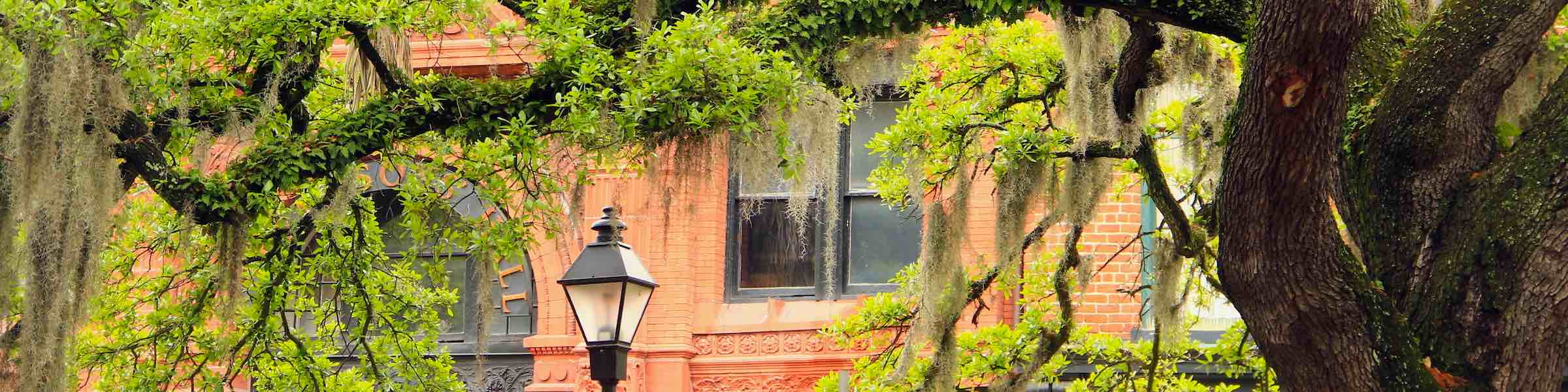 Mossy trees and the old Cotton Exchange as seen from Bay Street, Savannah.
