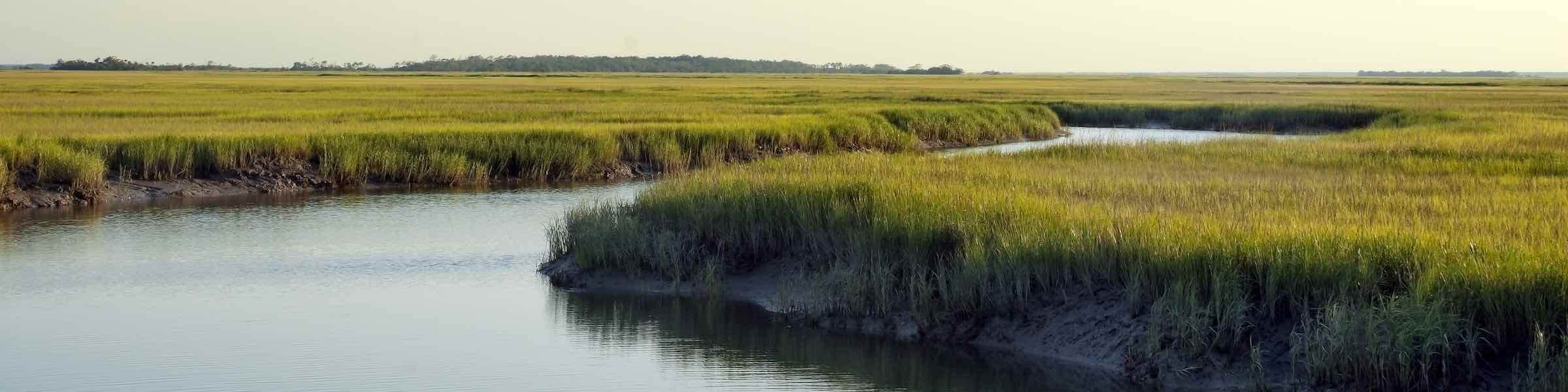 Peaceful marsh scene at Tybee Island, GA.