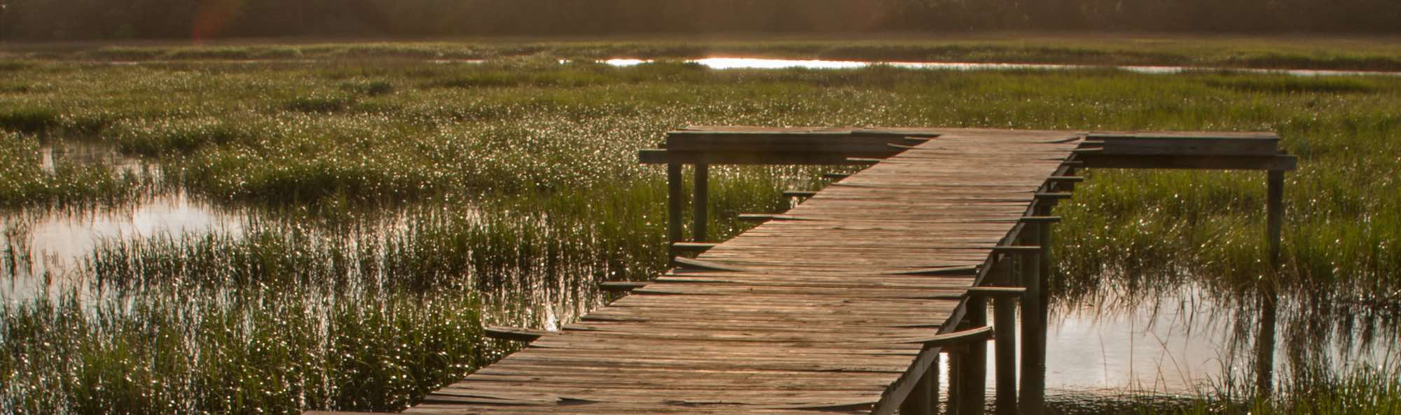 A wooden jetty over the marsh near Tybee Island, GA at sunset.